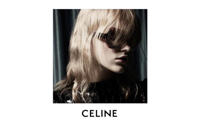 Modèle Céline Lunettes Papillon
